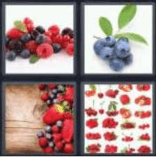 4 PICS 1 WORD ANSWERS 7 LETTERS berries