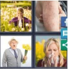 4 PICS 1 WORD ANSWERS 8 LETTERS allergic