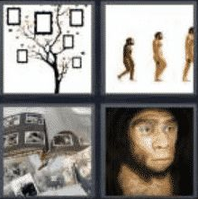 4 PICS 1 WORD ANSWERS 8 LETTERS ancestor