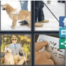 4 PICS 1 WORD ANSWERS 9 LETTERS blindness