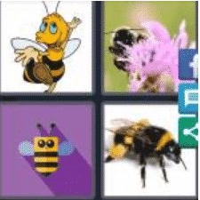 4 PICS 1 WORD ANSWERS 9 LETTERS bumblebee