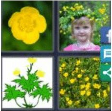 4 PICS 1 WORD ANSWERS 9 LETTERS buttercup