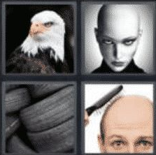 4 Pics 1 Word 4 Letter Answer bald