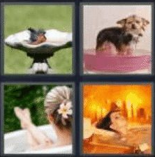 4 Pics 1 Word 4 Letter Answer bath