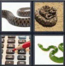 4 Pics 1 Word 5 Letter Answer adder