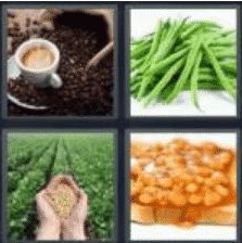 4 Pics 1 Word 5 Letter Answer beans 2
