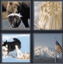 4 Pics 1 Word 6 Letter Answer alaska
