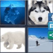 4 Pics 1 Word 6 Letter Answer arctic