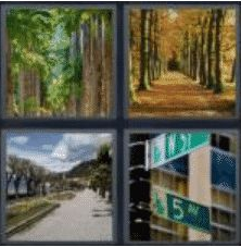4 Pics 1 Word 6 Letter Answer avenue