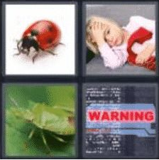 4 pics 1 word 3 letter bug