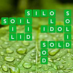 wordscapes dew 7 level 27 answers