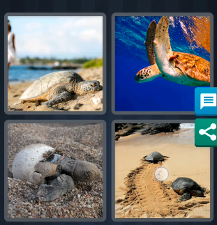 4 pics 1 word september 5 2020 answers today
