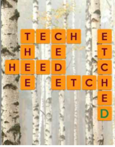 Wordscapes Birch 15 Level 2991 answers