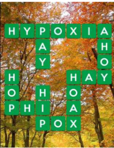 Wordscapes Fall 3 Level 2275 answers