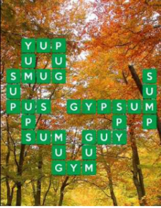 Wordscapes Fall 9 Level 2281 answers