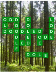 Wordscapes Fern 09 Level 4697 Answers