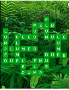 Wordscapes Fern 1 Level 3841 answers