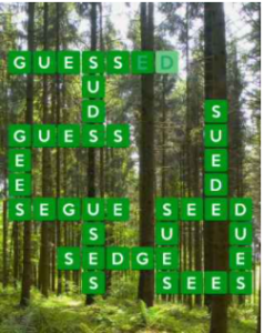Wordscapes Fern 16 Level 4704 Answers