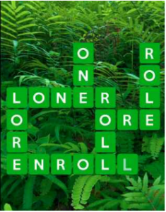 Wordscapes Fern 9 Level 3849 answers