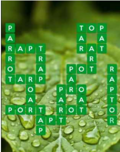Wordscapes Leaf 13 Level 2269 answers