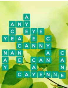Wordscapes Leaf 9 Level 1513 answers