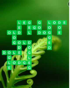 Wordscapes Wild 6 Level 678 answers