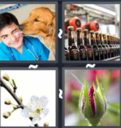 4 Pics 1 Word Level 142 Answers
