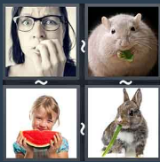 4 Pics 1 Word Level 1444 Answers