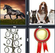 4 Pics 1 Word Level 2926 Answers
