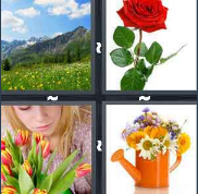 4 Pics 1 Word Level 2965 Answers