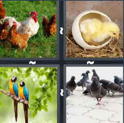 4 Pics 1 Word Level 3045 Answers