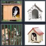 4 Pics 1 Word Level 4317 Answers