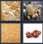 4 Pics 1 Word Level 4320 Answers