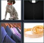 4 Pics 1 Word Level 4331 Answers