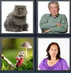 4 Pics 1 Word Level 4340 Answers