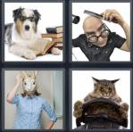 4 Pics 1 Word Level 4346 Answers