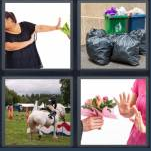 4 Pics 1 Word Level 4351 Answers