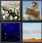 4 Pics 1 Word Level 4372 Answers