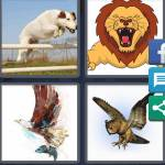 4 Pics 1 Word Level 4491 Answers