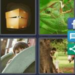 4 Pics 1 Word Level 4495 Answers