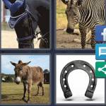 4 Pics 1 Word Level 4509 Answers
