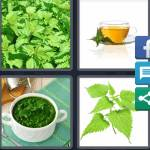 4 Pics 1 Word Level 4548 Answers