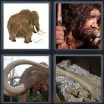 4 Pics 1 Word Level 4683 Answers