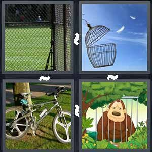 4 Pics 1 word Level 206 Answers