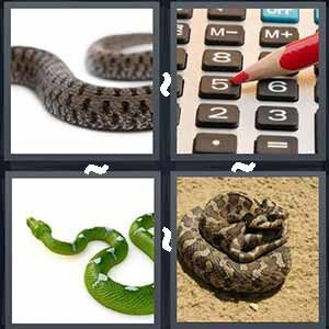 4 Pics 1 word Level 229 Answers
