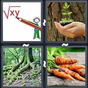 4 Pics 1 word Level 246 Answers