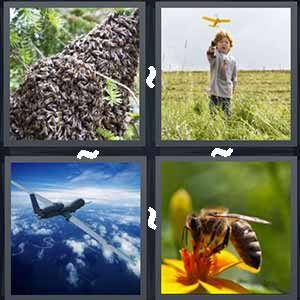 4 Pics 1 word Level 251 Answers