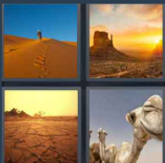4 Pics 1 word Level 78 Answers
