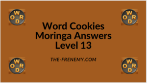 Word Cookies Moringa Level 13 Answers