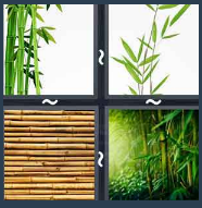 4 Pics 1 Word Level 1653 Answers